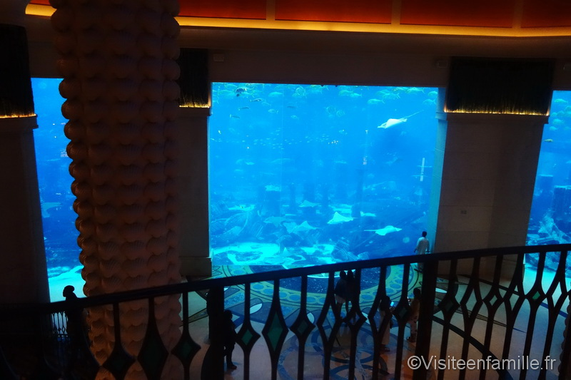 Immense aquarium dans l'hôtel Atlantis The Palm Dubai