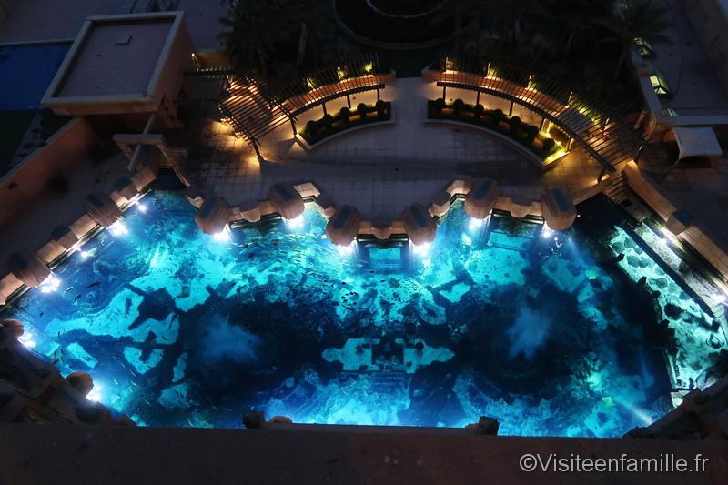 Vue sur l'aquarium de nuit depuis le club imperial