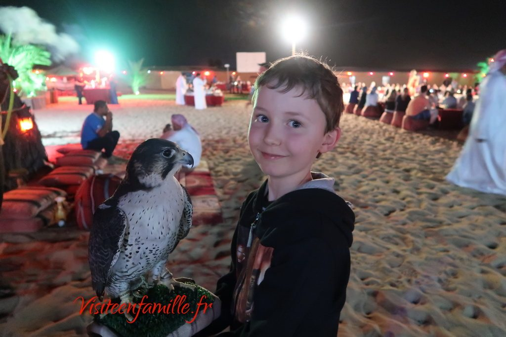 extreme safari dubai hawk