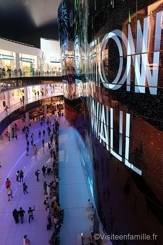 Dubai aquarium vu de haut Dubai mall