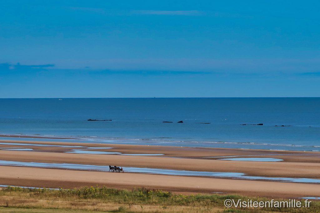Chevaux sur la plage Omaha beach