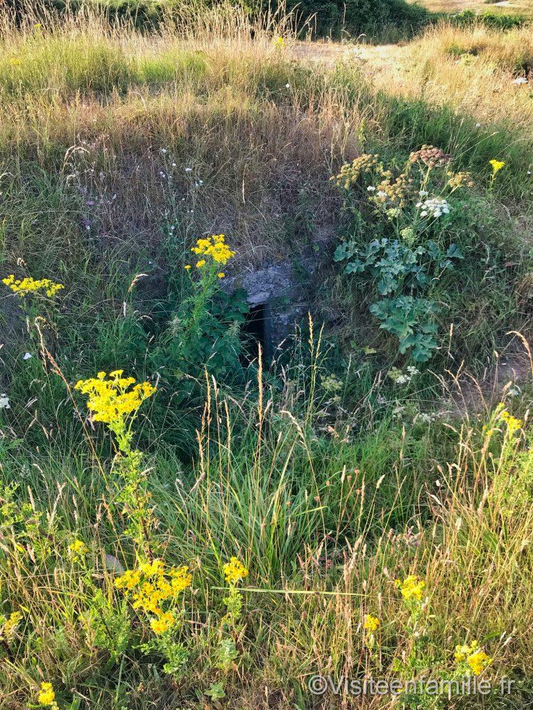 bunker caché à Omaha beach