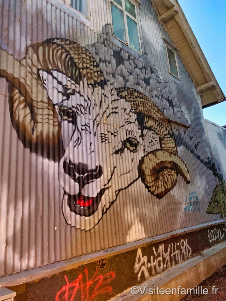 mouton street-art Reykjavik